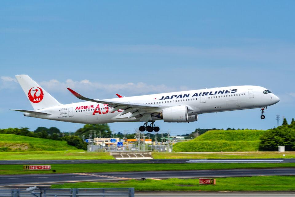 JAL A350(処理前)