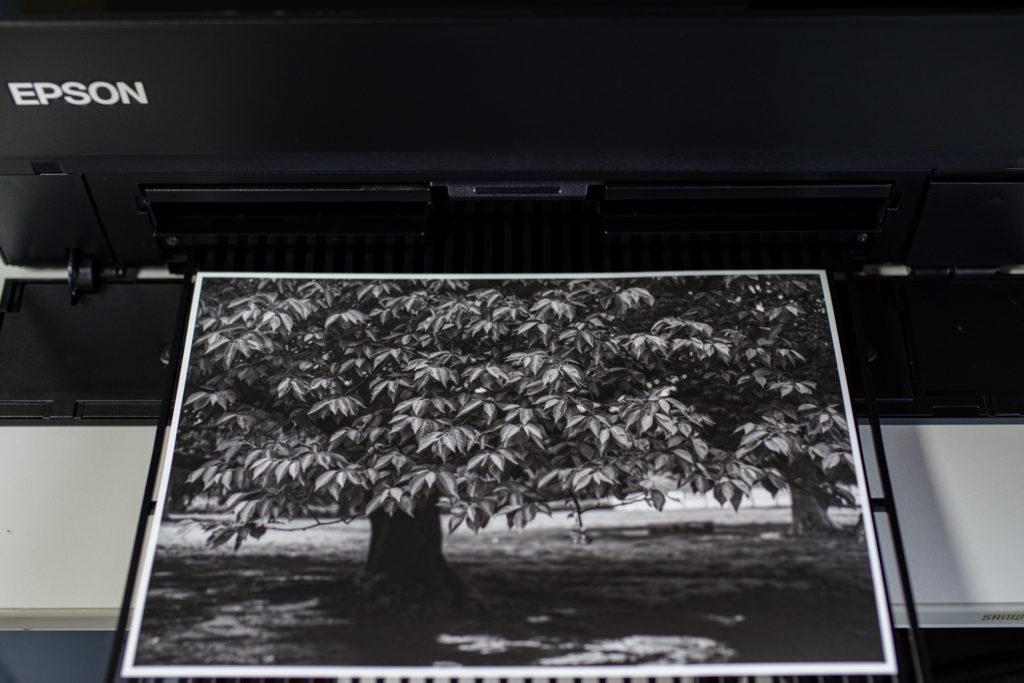 マット白黒印刷