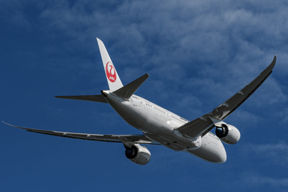 JAL B787の後ろ姿