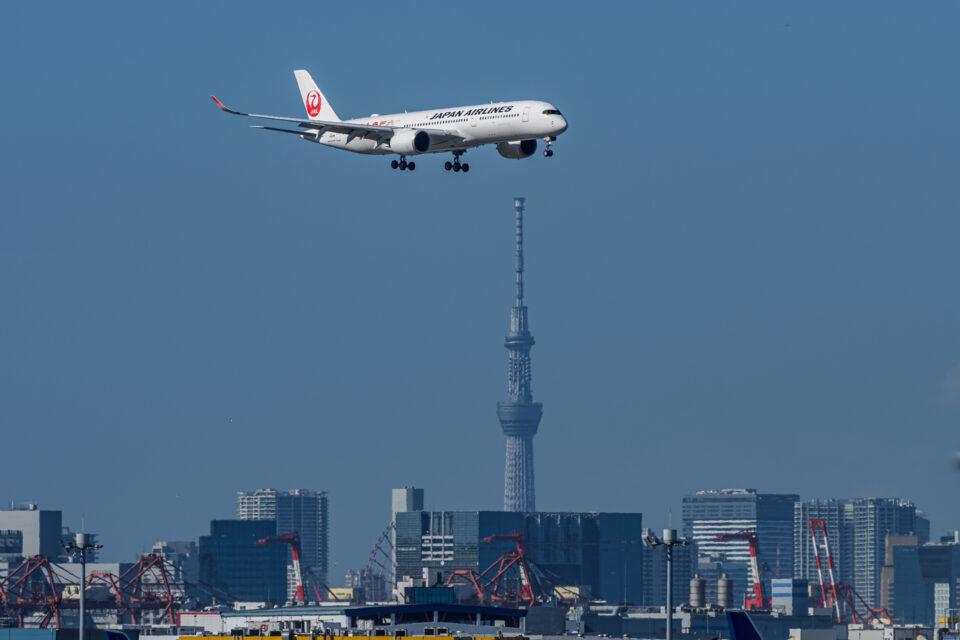 東京スカイツリーとJAL A350-900
