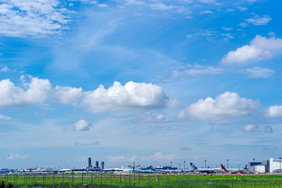 ひこうきの丘から成田空港方面の眺め