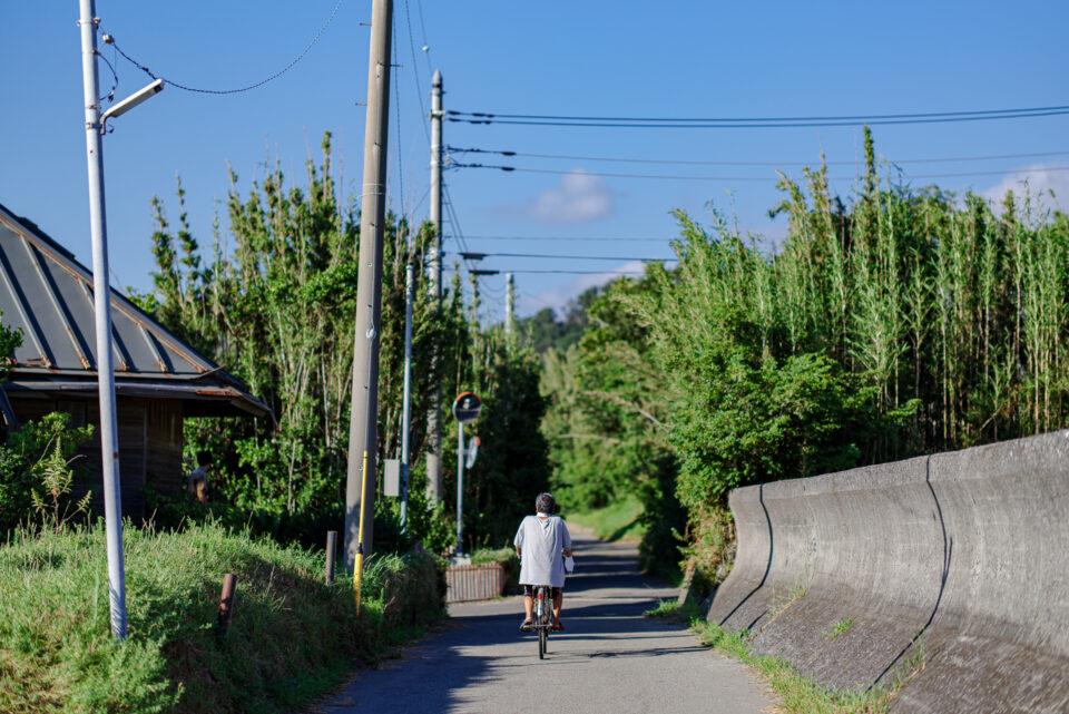 海沿いの路地を走る自転車