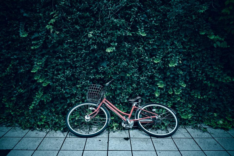 緑の前に倒れた自転車