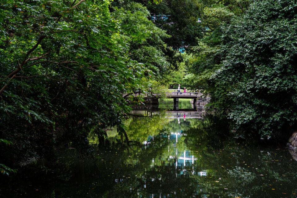 浜離宮恩賜庭園の森と池