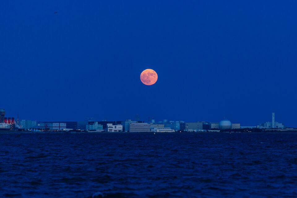 浦安方面に昇始めた月