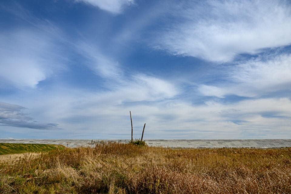 防潮堤前の空き地