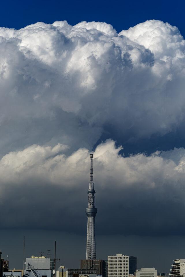 積乱雲と東京スカイツリー 縦構図