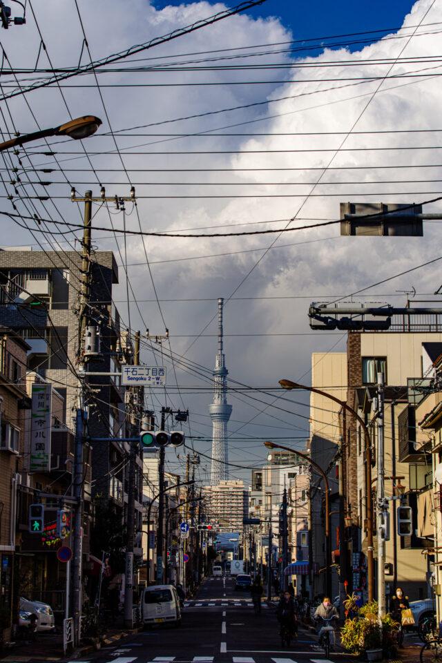 積乱雲と東京スカイツリーと電線の下町