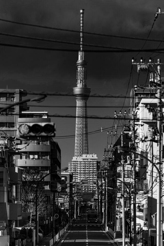 下町から見た東京スカイツリー 縦構図モノクロ
