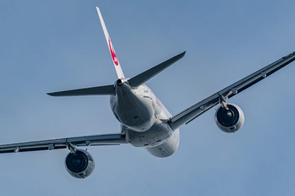 JAL A350-900バックショット
