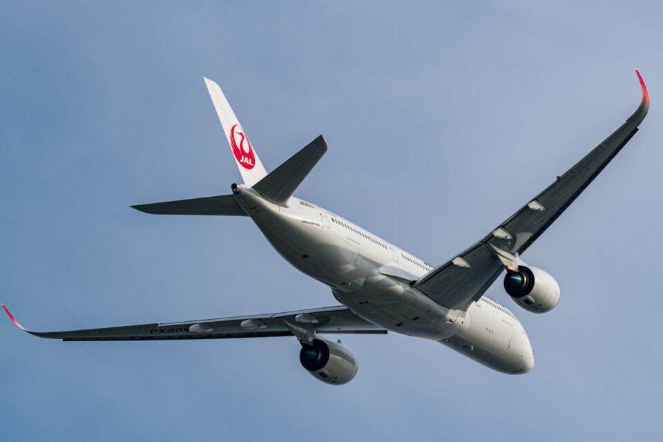 JAL A350-900 バックショット