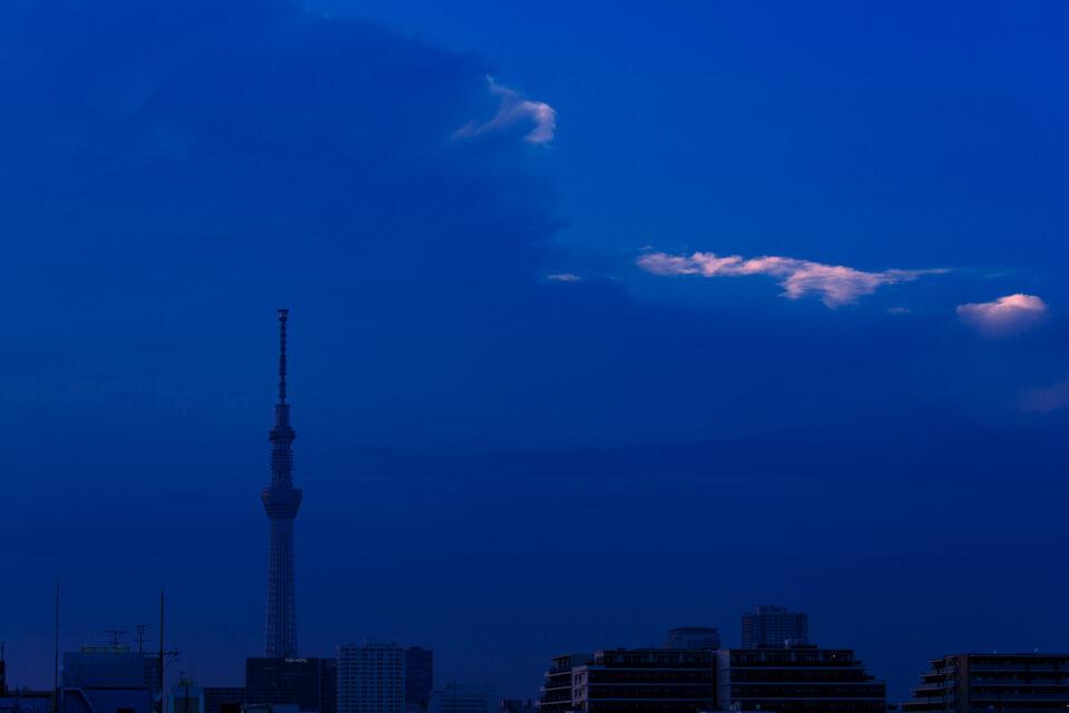 青い夕暮れの東京スカイツリー