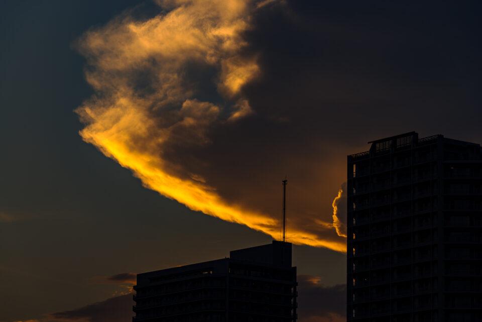 高層マンションと夕方の積乱雲