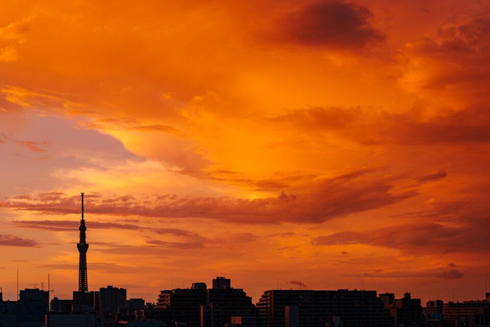 夕焼け空と東京スカイツリー