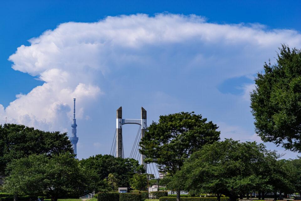 東京スカイツリーと巨大な積乱雲